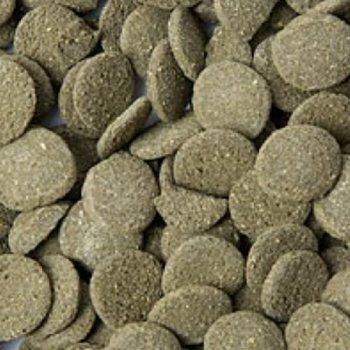 Algenchips (wafers) mit 6% Spirulina
