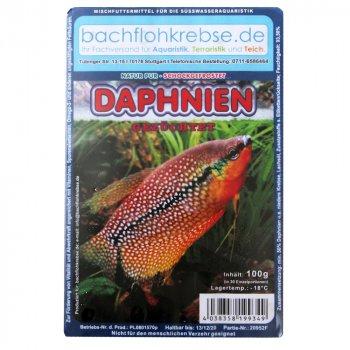Daphnien (Wasserflöhe, Daphnia) 100g Frostfutter