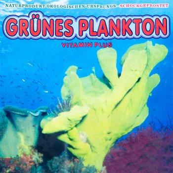 Grünes Plankton 100g Frostfutter