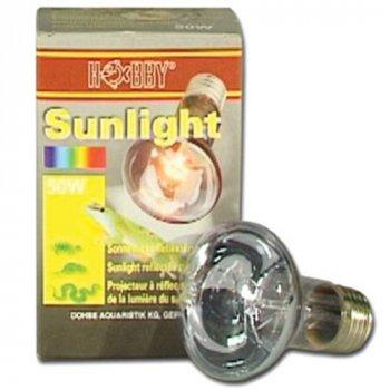 Hobby Sunlight 100 Watt