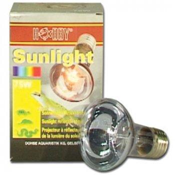 Hobby Sunlight 75 Watt