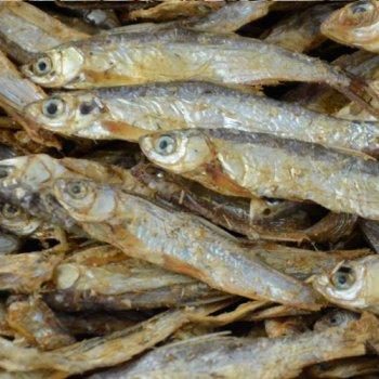 Stinte (Trockenfisch)