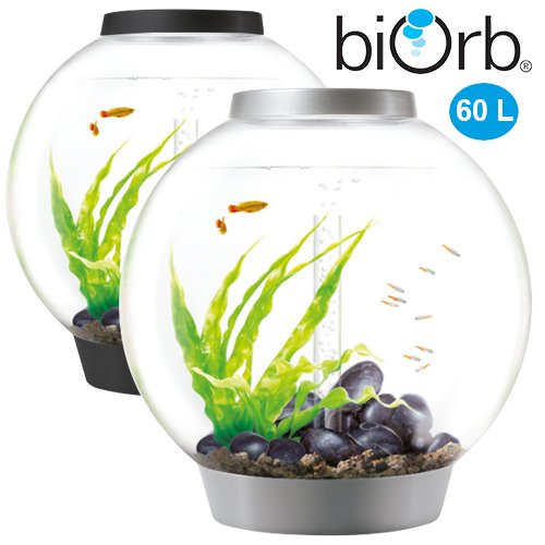 biorb classic 60l kaltwasser komplett aquarium. Black Bedroom Furniture Sets. Home Design Ideas