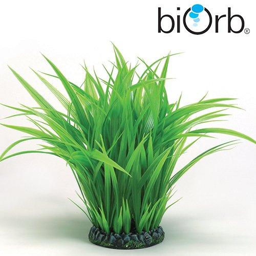 biorb deko grasring gro deko pflanzen