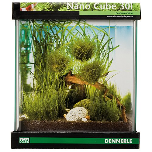 dennerle futter filter pflanzen nano aquarium. Black Bedroom Furniture Sets. Home Design Ideas