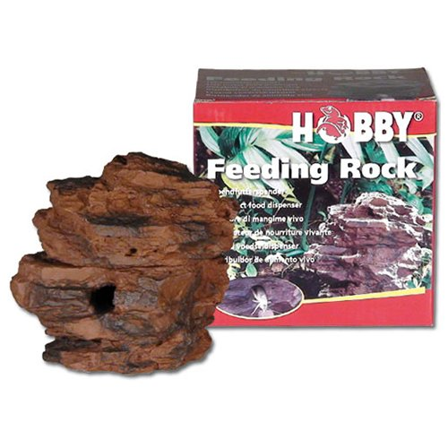Reptile Feeding Rock Hobby