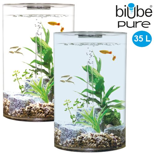 biube 35 liter komplettaquarium bei. Black Bedroom Furniture Sets. Home Design Ideas