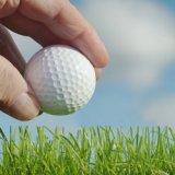 Fischfutter Golfball