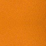 500 gr Artemiaeier dekapsuliert vakuumverpackt