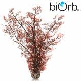 Hornkoralle Dunkelrot - biOrb Deko Pflanze