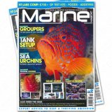 Marine Habitat Januar - Februar 2014