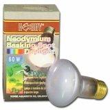 Neodymium Basking Spot Daylight 60 Watt Lampe