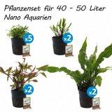 Pflanzenset für 40 - 50 Liter Nano Aquarien