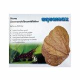 Seemandelbaumblätter - nano