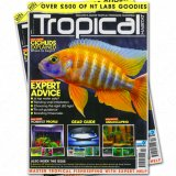 Tropical Habitat Februar - März 2014
