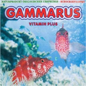 Frostfutter - tiefgefrorener Gammarus